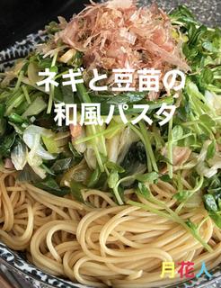 ネギと豆苗の和風パスタrecipe-01.jpeg